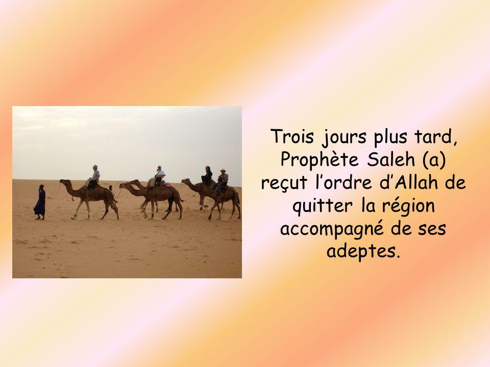 Trois jours plus tard, Prophète Saleh (a) reçut lordre dAllah de quitter la région accompagné de ses adeptes.