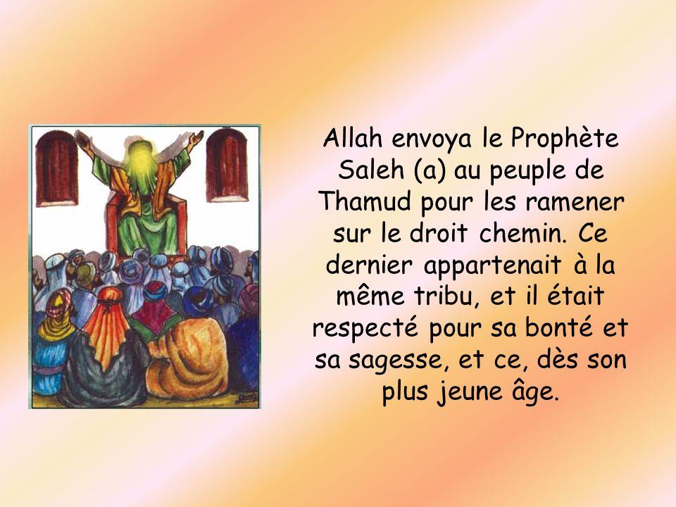 Allah envoya le Prophète Saleh (a) au peuple de Thamud pour les ramener sur le droit chemin. Ce dernier appartenait à la même tribu, et il était respe