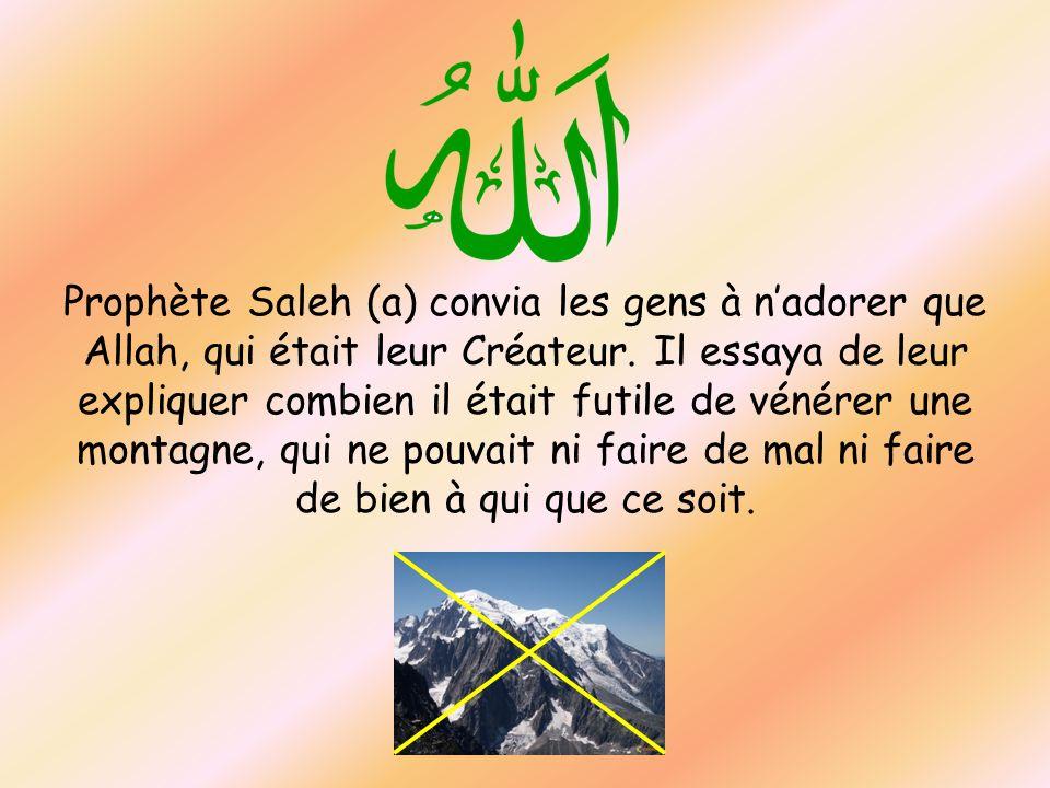Prophète Saleh (a) convia les gens à nadorer que Allah, qui était leur Créateur. Il essaya de leur expliquer combien il était futile de vénérer une mo