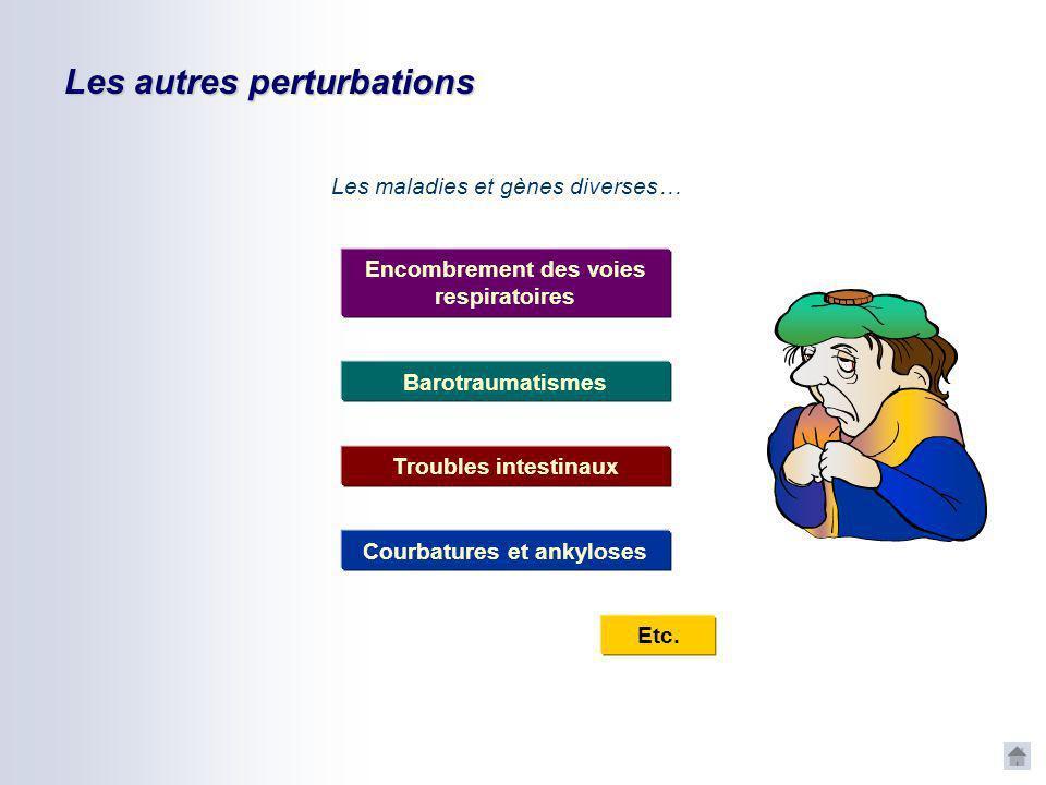 Les autres perturbations CNVV CNVV – avril 2006 Les additifs… (dans le carburant) Alcool Tabac Stupéfiants Médicaments