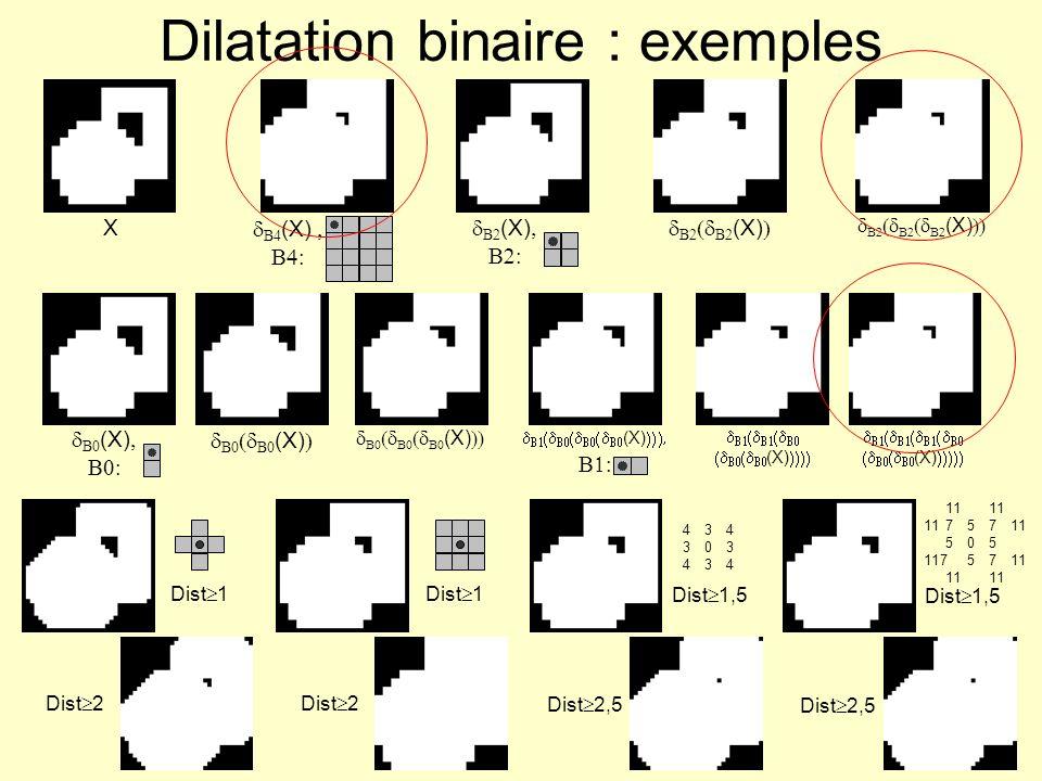 43430343443430343411 1175711 505 117571111 Dist 1 Dist 1,5 Érosion binaire : exemples (X) X Dist 2 Dist 2,5