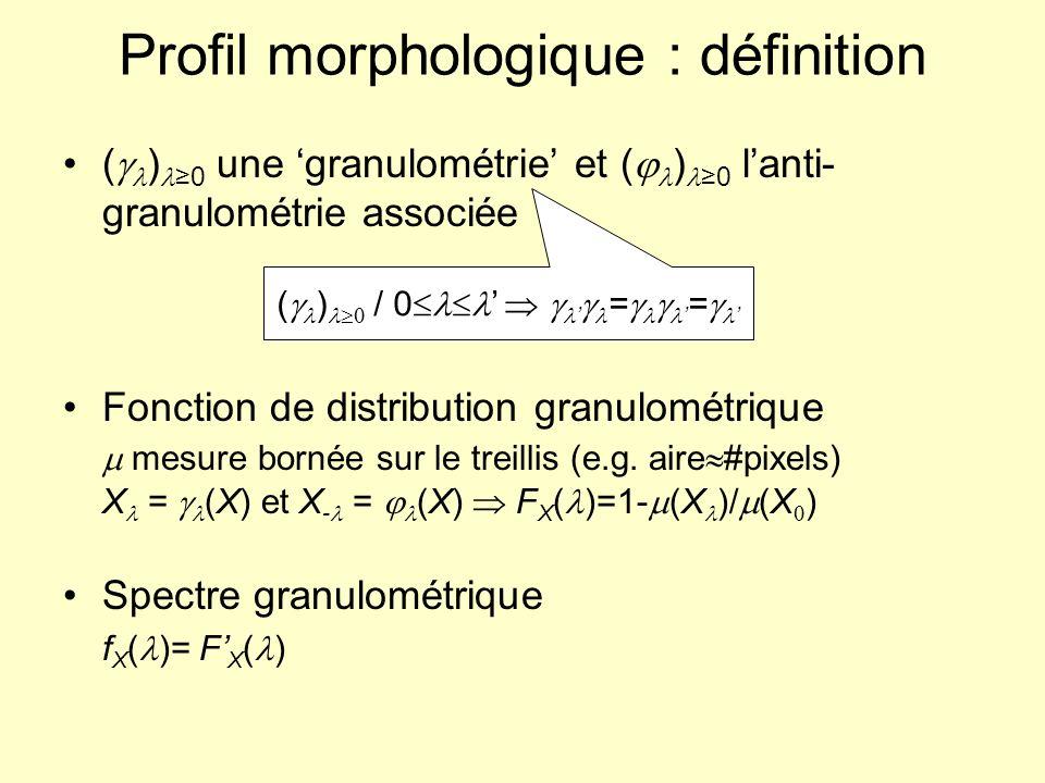 Profil morphologique : application à lanalyse de texture X0X0 X 1 = (X 0 ) X 2 = (X 1 ) X 3 = (X 2 ) X 4 = (X 3 ) X -1 = (X 0 ) X -3 = (X -2 ) X-4X-4 X-5X-5 X-6X-6 X-7X-7 X-8X-8