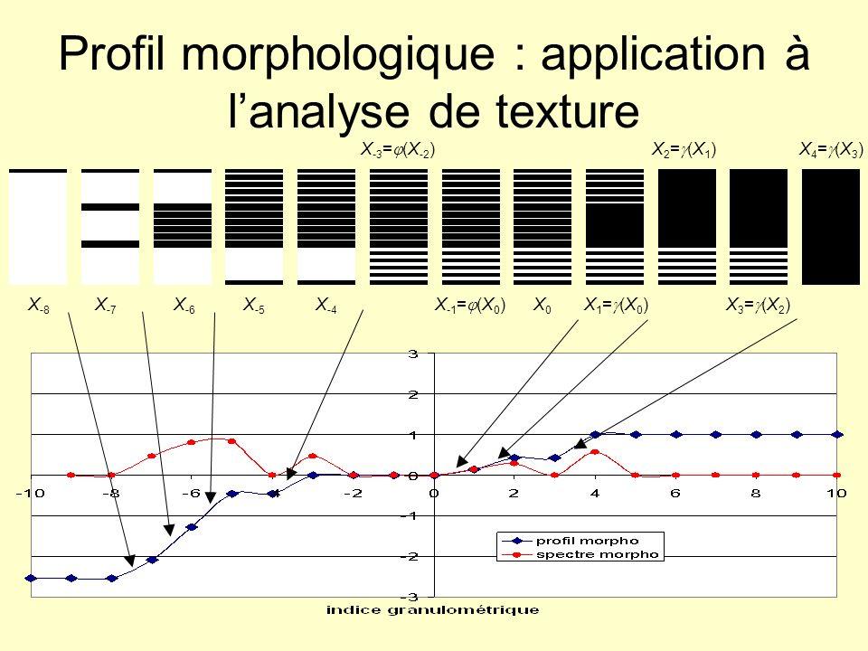 Profil morphologique : application à lanalyse de texture X0X0 X 1 = (X 0 ) X 2 = (X 1 ) X 3 = (X 2 ) X 4 = (X 3 ) X -1 = (X 0 ) X -3 = (X -2 ) X-4X-4