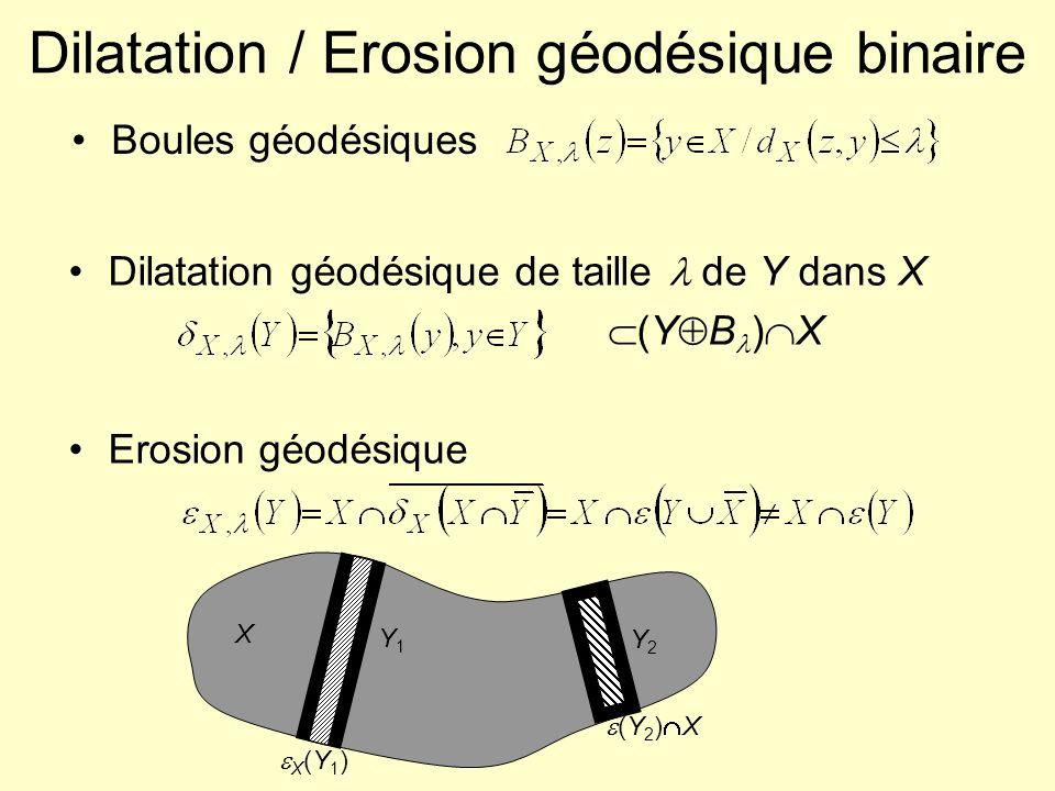 Reconstruction géodésique binaire Application : extraction de composantes connexes à partir de marqueurs Principe : à partir dun point de la composante, on reconstruit toute la composante Méthode : dilatation géodésique dans X