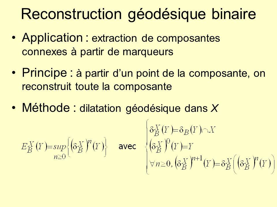 Reconstruction géodésique : algorithme (cas binaire) Éviter de réitérer dilatation jusquau diamètre des plus grandes composantes connexes Cas efficace : utilisation dune pile des pixels de limage à traiter : –Initialisation de la pile avec les pixels de X Y –Tant quil reste des éléments dans la pile : Extraire un élément (pixel) de la pile Le traiter –labelisation de la composante connexe dans limage résultat –Calcul de ses voisins (dilatation par B) Ajout dans la pile (si nécessaire) des voisins situés dans X