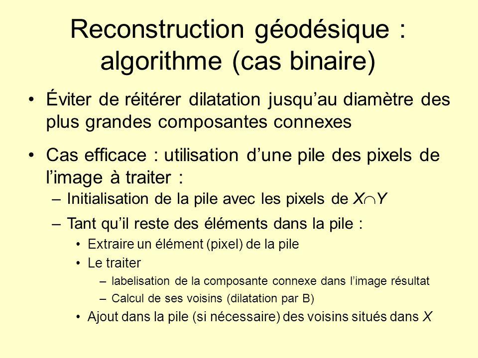 Reconstruction géodésique : exemple Itérationcontenu de la pile 1(2,1) 2(1,1) (3,1) 3(3,1) (1,2) 4(1,2) (3,2) (4,1) 5(3,2) (4,1) (1,3) 6(4,1) (1,3) (3,3) 7(1,3) (3,3) (5,1) 8(3,3) (5,1) (2,3) (1,4) 9(5,1) (2,3) (1,4) (4,3) (3,4) 10(2,3) (1,4) (4,3) (3,4) (5,2) 11 (1,4) (4,3) (3,4) (5,2) (2,4) 12 (4,3) (3,4) (5,2) (2,4) (5,3) (4,4) 17 (4,4) (5,4) 0123456701234567 0 1 2 3 4 5 13 (3,4) (5,2) (2,4) (5,3) (4,4) 14 (5,2) (2,4) (5,3) (4,4) 15 (2,4) (5,3) (4,4) 16 (5,3) (4,4) (5,4) 18 (5,4)