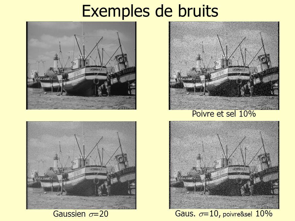 Gaus. =10, poivre&sel 10% Gaussien =20 Exemples de bruits Poivre et sel 10%