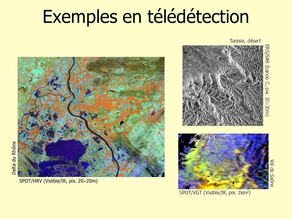 ERS/SAR (bande C, pix. 30 30m) Tunisie, désert Exemples en télédétection SPOT/VGT (Visible/IR, pix. 1km 2 ) Val de Saône Delta du Rhône SPOT/HRV (Visi