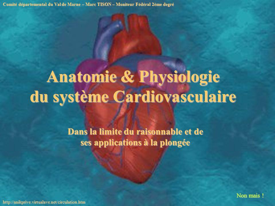 Non mais ! Anatomie & Physiologie du système Cardiovasculaire Comité départemental du Val de Marne – Marc TISON – Moniteur Fédéral 2ème degré http://a
