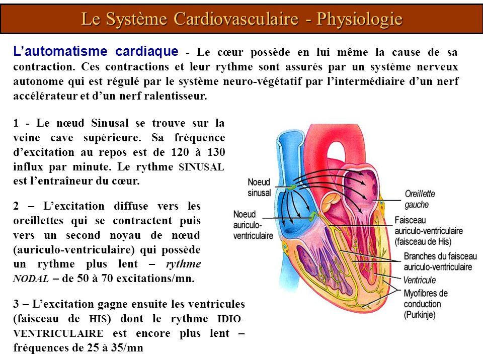 Lautomatisme cardiaque - Le cœur possède en lui même la cause de sa contraction. Ces contractions et leur rythme sont assurés par un système nerveux a