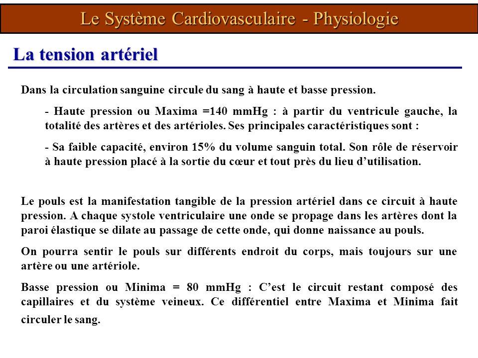 Dans la circulation sanguine circule du sang à haute et basse pression. - Haute pression ou Maxima =140 mmHg : à partir du ventricule gauche, la total