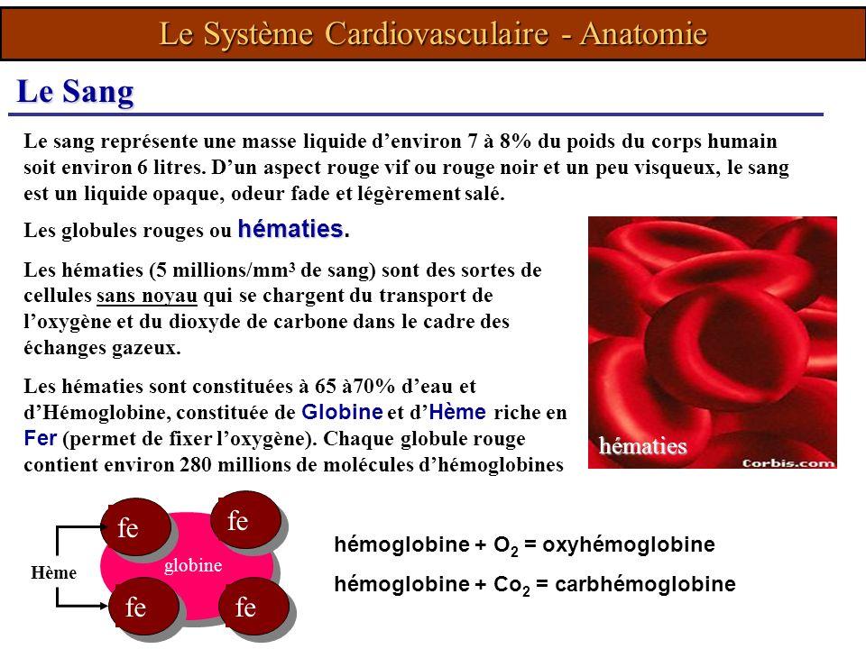 Le sang représente une masse liquide denviron 7 à 8% du poids du corps humain soit environ 6 litres. Dun aspect rouge vif ou rouge noir et un peu visq