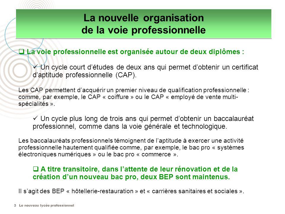 Le nouveau lycée professionnel3 La voie professionnelle est organisée autour de deux diplômes : Un cycle court détudes de deux ans qui permet dobtenir un certificat daptitude professionnelle (CAP).