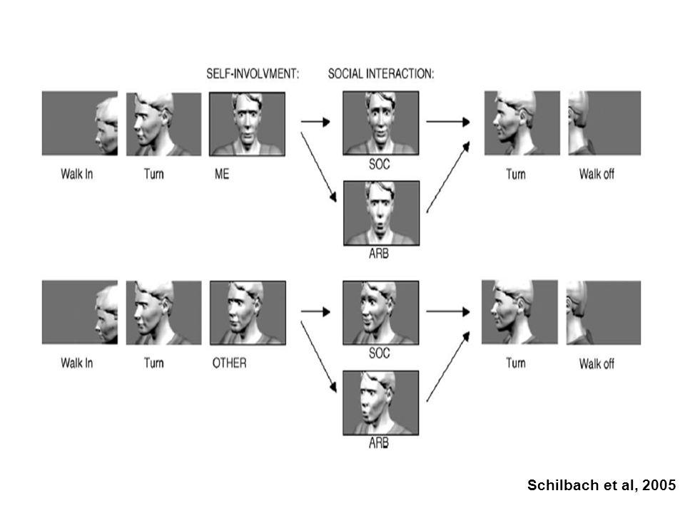 Schilbach et al, 2005
