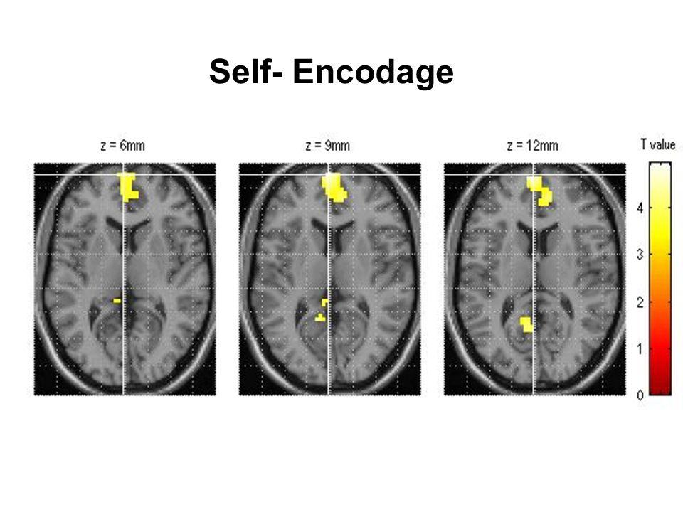 Cortex Médial Préfrontal: CMPF Région hétérogène –Cortex Paracingulaire incluant cingulum rostral (A Brodman 24-32) –Parties Médianes de BA 9 et 10: régions dorsales et ventrales –Partie polaire de BA 10