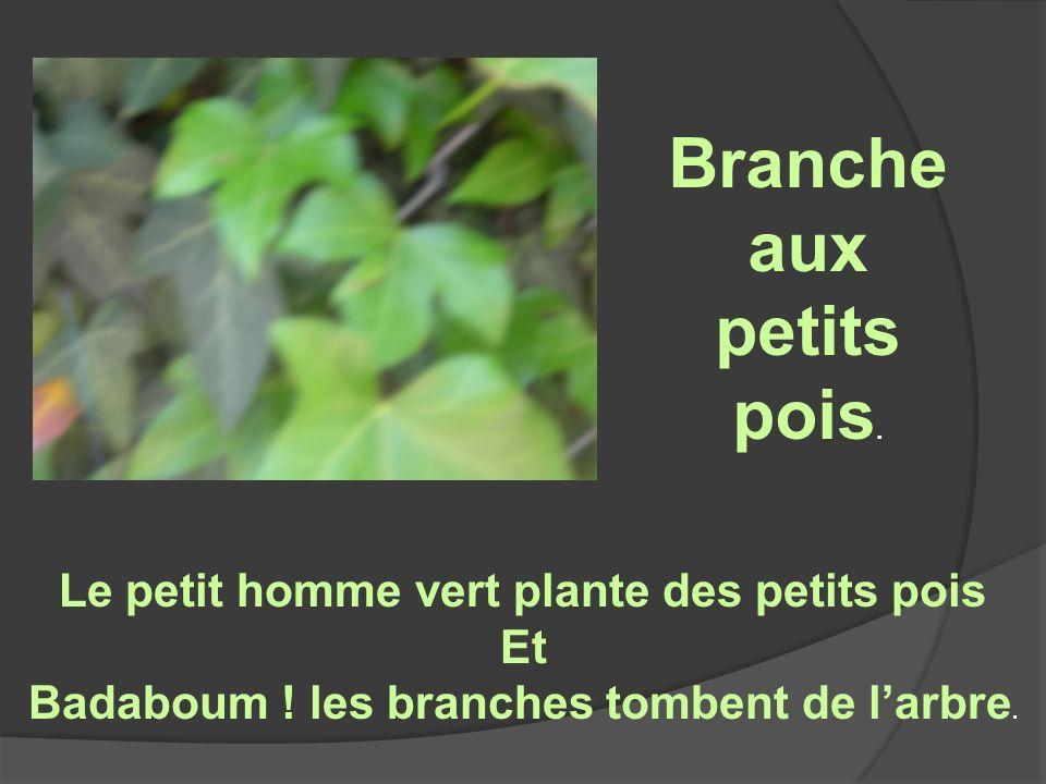Le petit homme vert plante des petits pois Et Badaboum .