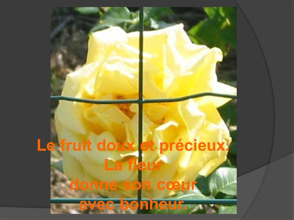 Le fruit doux et précieux. La fleur donne son cœur avec bonheur.