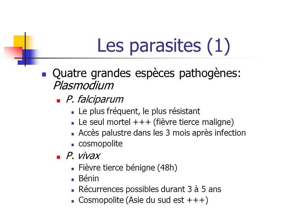Les parasites (1) Quatre grandes espèces pathogènes: Plasmodium P. falciparum Le plus fréquent, le plus résistant Le seul mortel +++ (fièvre tierce ma