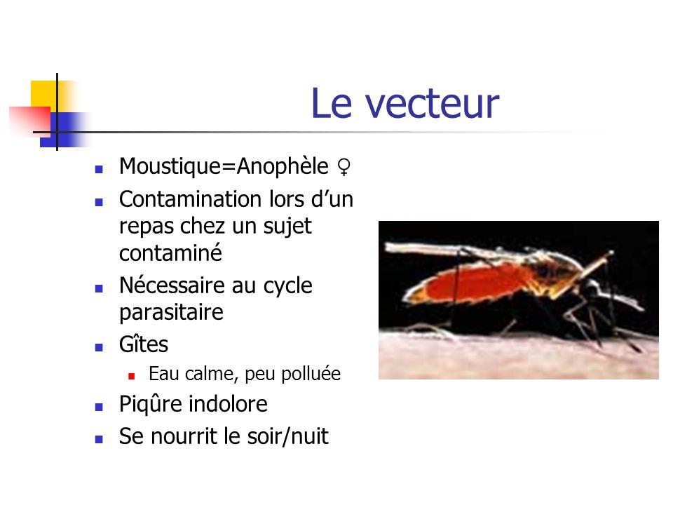 Le vecteur Moustique=Anophèle Contamination lors dun repas chez un sujet contaminé Nécessaire au cycle parasitaire Gîtes Eau calme, peu polluée Piqûre