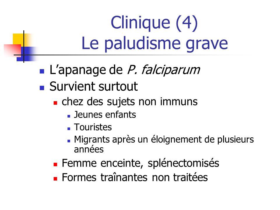 Clinique (4) Le paludisme grave Lapanage de P. falciparum Survient surtout chez des sujets non immuns Jeunes enfants Touristes Migrants après un éloig