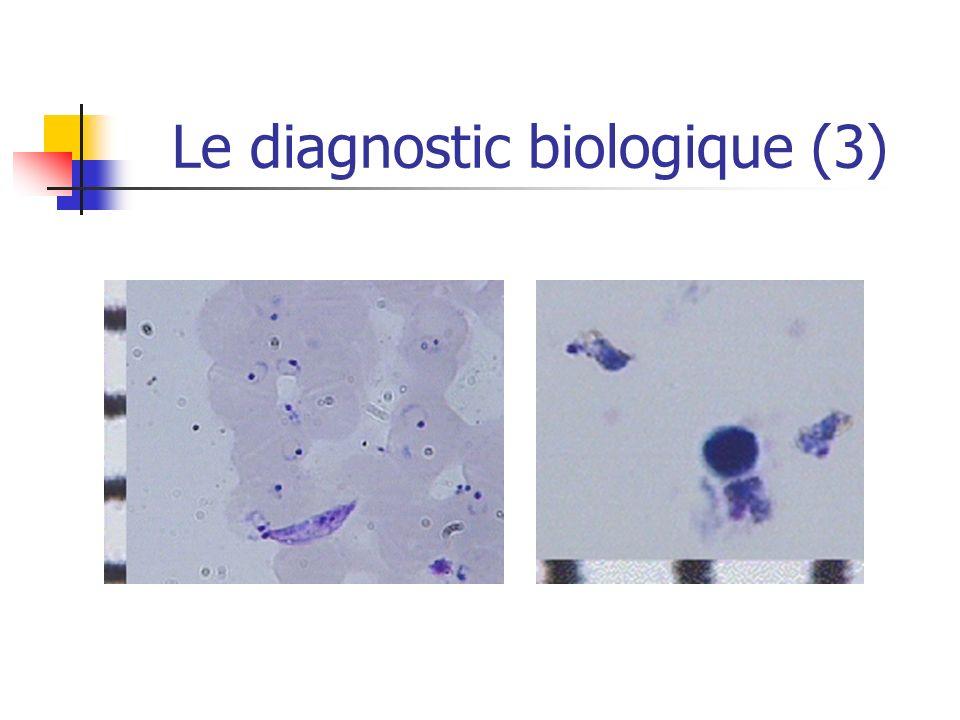 Le diagnostic biologique (3)