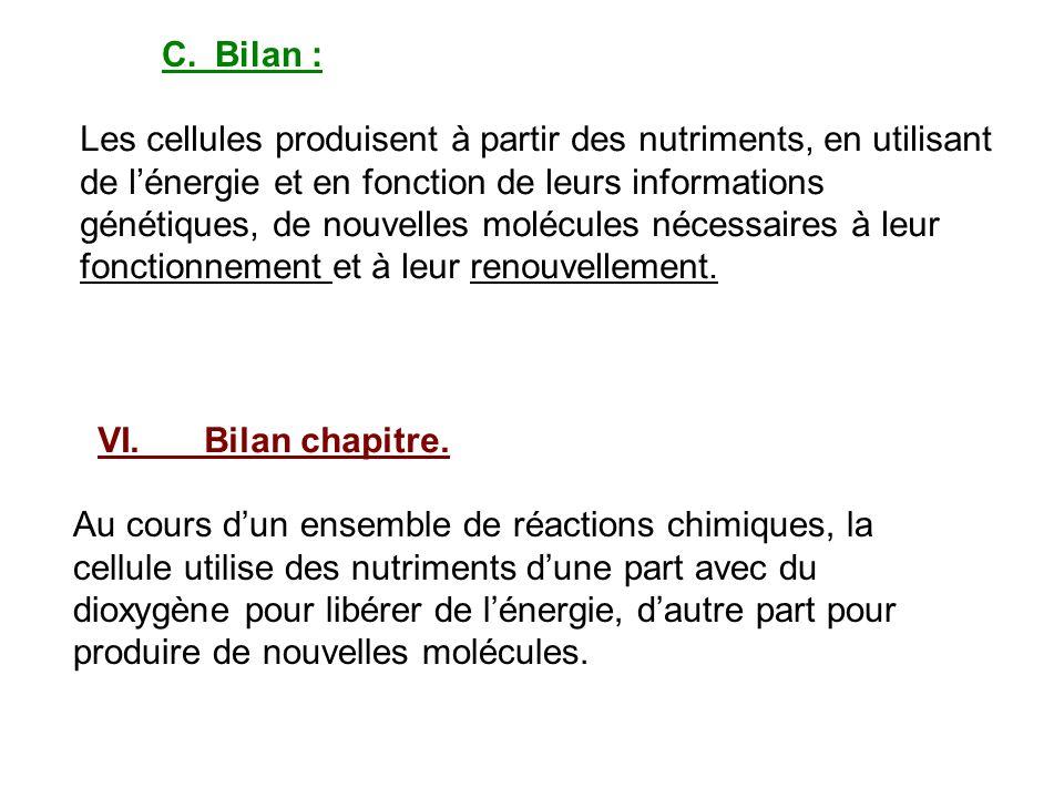 C.Bilan : Les cellules produisent à partir des nutriments, en utilisant de lénergie et en fonction de leurs informations génétiques, de nouvelles molé
