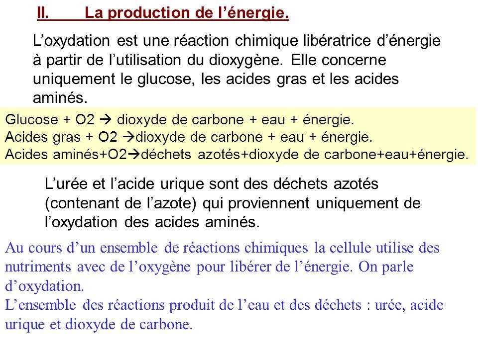 II.La production de lénergie. Loxydation est une réaction chimique libératrice dénergie à partir de lutilisation du dioxygène. Elle concerne uniquemen