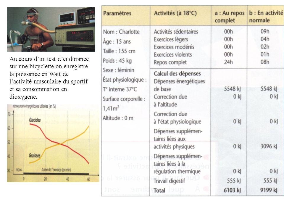 Au cours dun test dendurance sur une bicyclette on enregistre la puissance en Watt de lactivité musculaire du sportif et sa consommation en dioxygène.