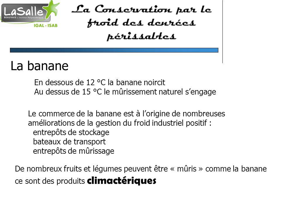 La banane En dessous de 12 °C la banane noircit Au dessus de 15 °C le mûrissement naturel sengage Le commerce de la banane est à lorigine de nombreuse