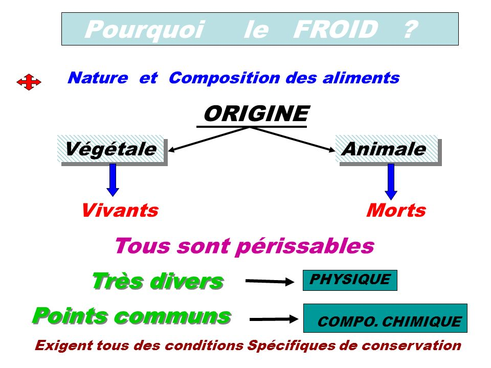 Pourquoi le FROID ? Nature et Composition des aliments Végétale Animale ORIGINE VivantsMorts Tous sont périssables Points communs PHYSIQUE COMPO. CHIM