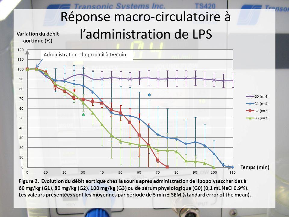 Réponse macro-circulatoire à ladministration de LPS * * *