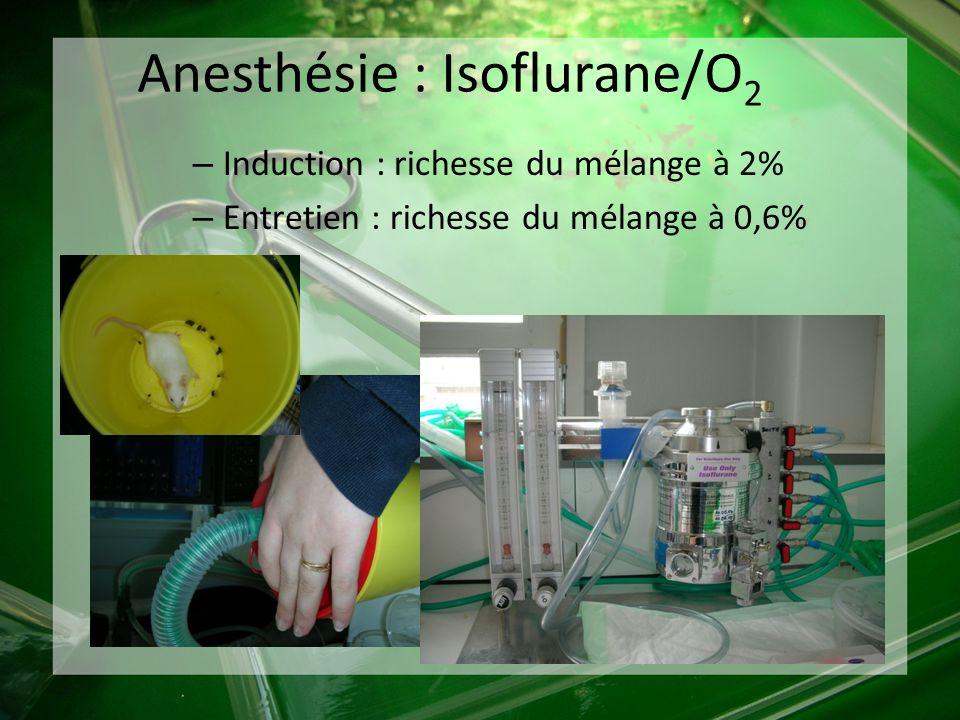 – Induction : richesse du mélange à 2% – Entretien : richesse du mélange à 0,6% Anesthésie : Isoflurane/O 2