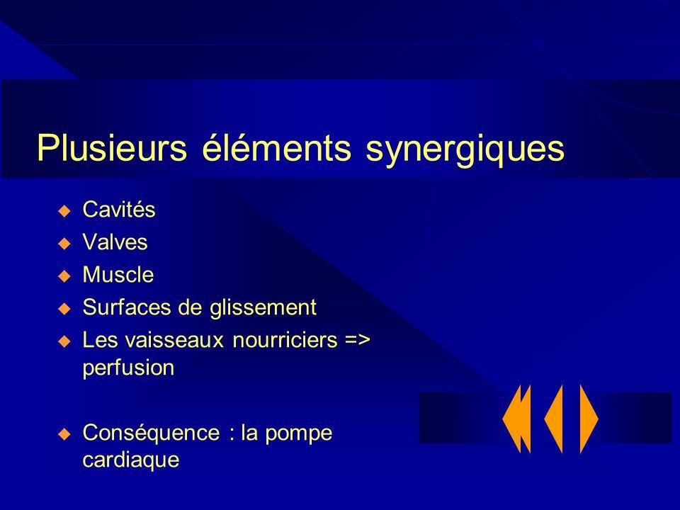 Plusieurs éléments synergiques Cavités Valves Muscle Surfaces de glissement Les vaisseaux nourriciers => perfusion Conséquence : la pompe cardiaque