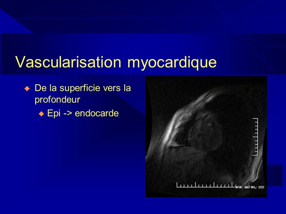 Vascularisation myocardique De la superficie vers la profondeur u Epi -> endocarde
