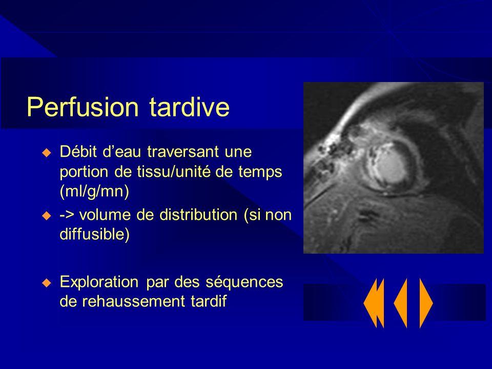 Perfusion tardive Débit deau traversant une portion de tissu/unité de temps (ml/g/mn) -> volume de distribution (si non diffusible) Exploration par de