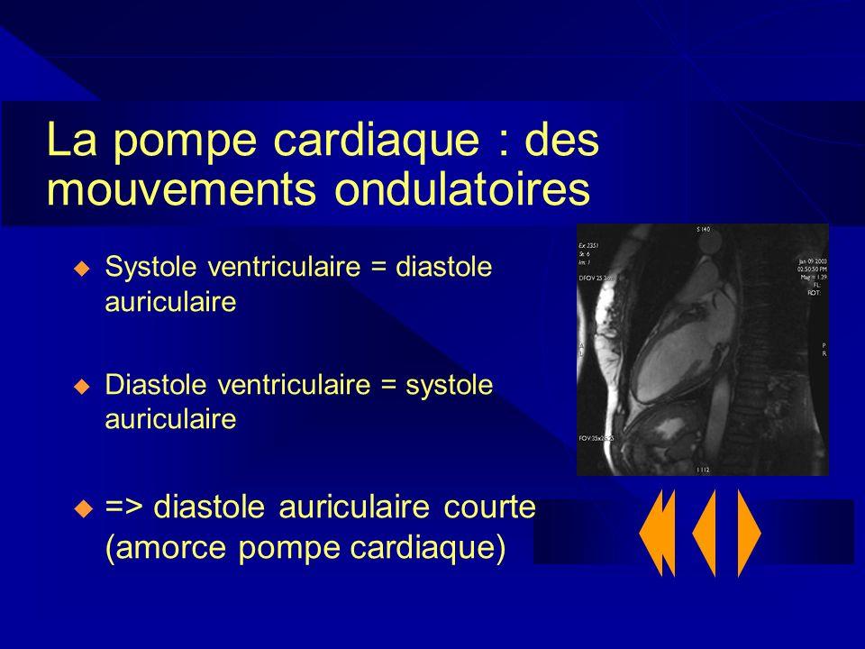 La pompe cardiaque : des mouvements ondulatoires Systole ventriculaire = diastole auriculaire Diastole ventriculaire = systole auriculaire => diastole