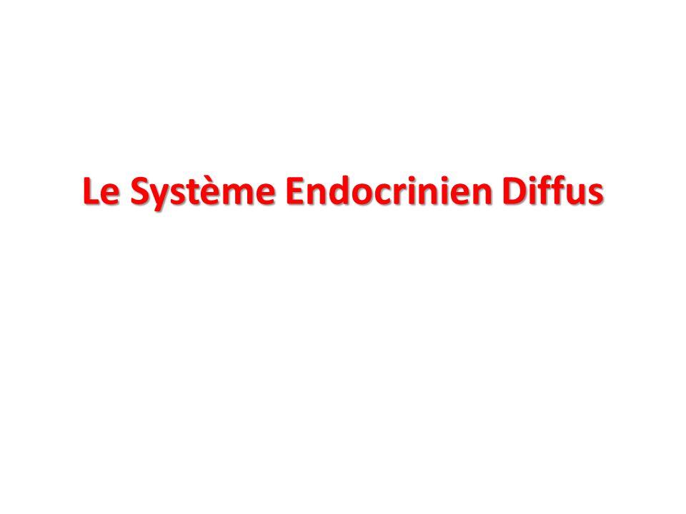 Le Système Endocrinien Diffus