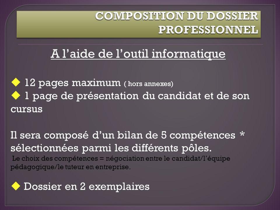 A laide de loutil informatique 12 pages maximum ( hors annexes) 1 page de présentation du candidat et de son cursus Il sera composé dun bilan de 5 com