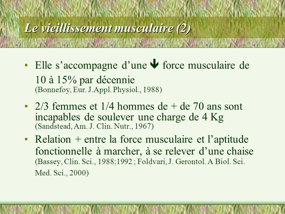 Le vieillissement musculaire (2) Elle saccompagne dune force musculaire de 10 à 15% par décennie (Bonnefoy, Eur. J.Appl. Physiol., 1988) 2/3 femmes et
