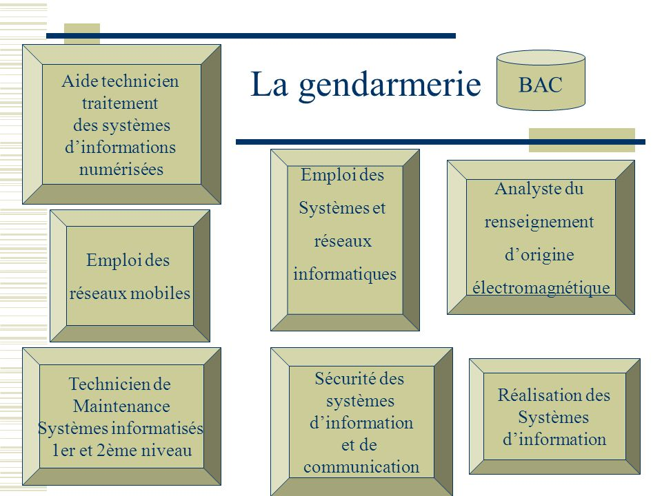 La gendarmerie BAC Emploi des Systèmes et réseaux informatiques Aide technicien traitement des systèmes dinformations numérisées Analyste du renseigne