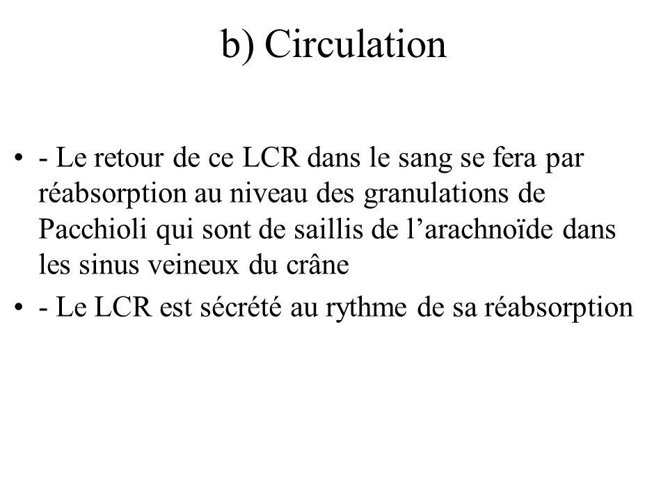 b) Circulation - Le retour de ce LCR dans le sang se fera par réabsorption au niveau des granulations de Pacchioli qui sont de saillis de larachnoïde