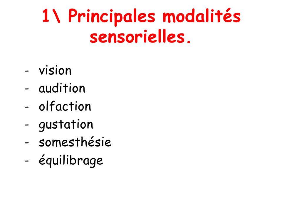 1\ Principales modalités sensorielles. - vision - audition - olfaction - gustation - somesthésie - équilibrage