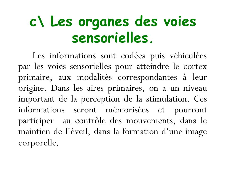 c\ Les organes des voies sensorielles. Les informations sont codées puis véhiculées par les voies sensorielles pour atteindre le cortex primaire, aux
