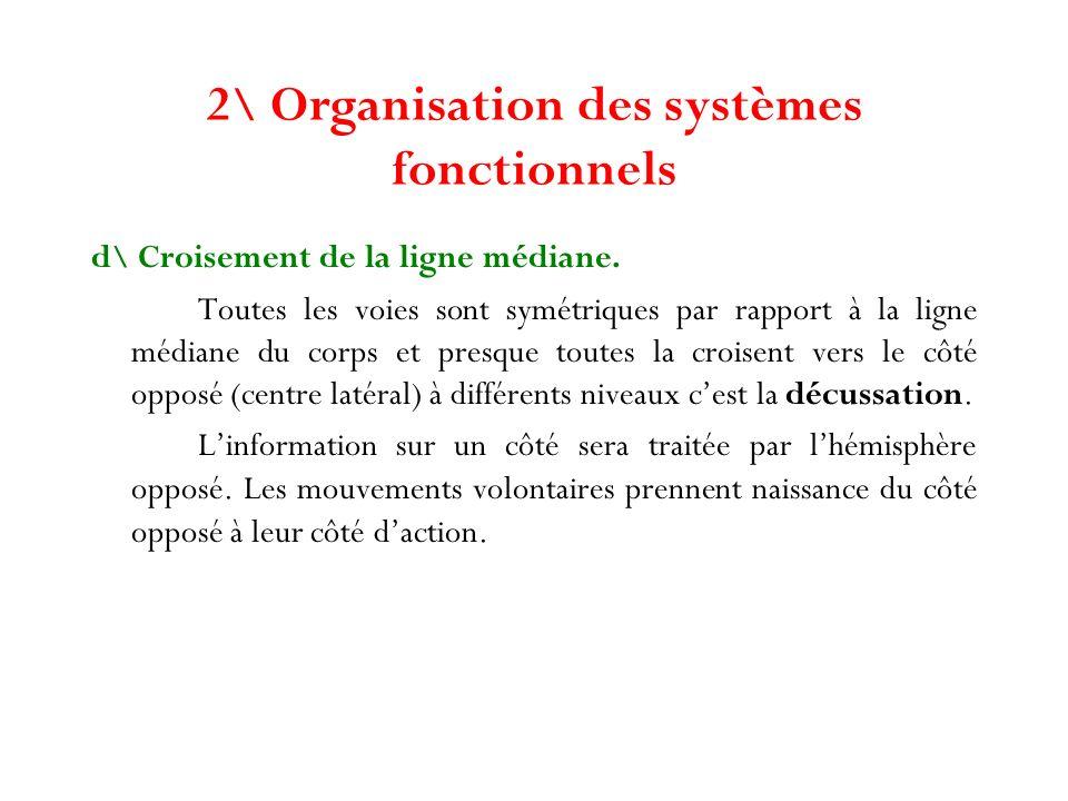 2\ Organisation des systèmes fonctionnels d\ Croisement de la ligne médiane. Toutes les voies sont symétriques par rapport à la ligne médiane du corps