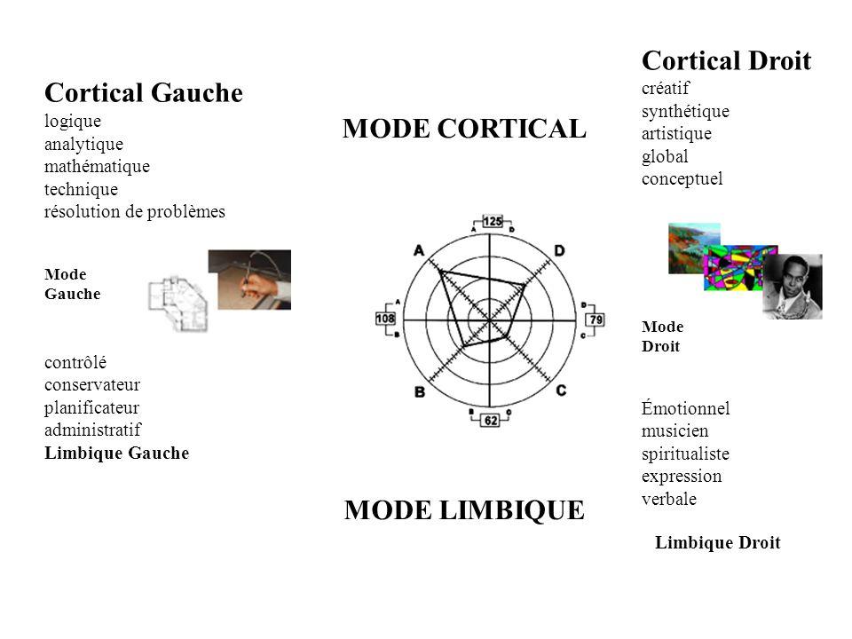 Cortical Gauche logique analytique mathématique technique résolution de problèmes Mode Gauche contrôlé conservateur planificateur administratif Limbiq