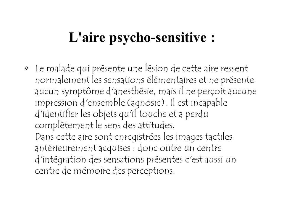 L'aire psycho-sensitive : Le malade qui présente une lésion de cette aire ressent normalement les sensations élémentaires et ne présente aucun symptôm