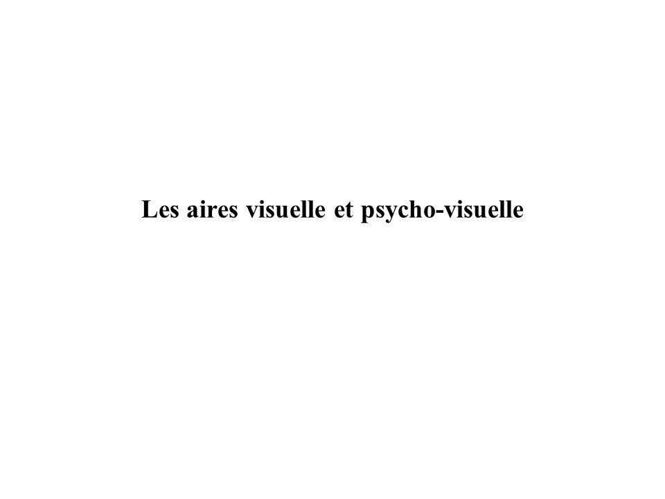 Les aires visuelle et psycho-visuelle