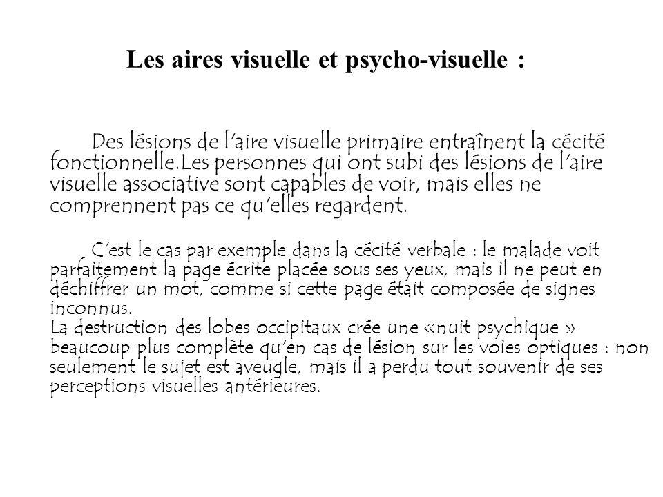 Les aires visuelle et psycho-visuelle : Des lésions de l'aire visuelle primaire entraînent la cécité fonctionnelle.Les personnes qui ont subi des lési