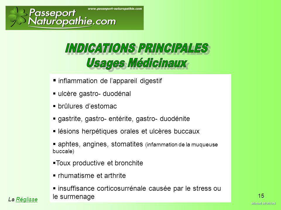 15 inflammation de lappareil digestif ulcère gastro- duodénal brûlures destomac gastrite, gastro- entérite, gastro- duodénite lésions herpétiques oral