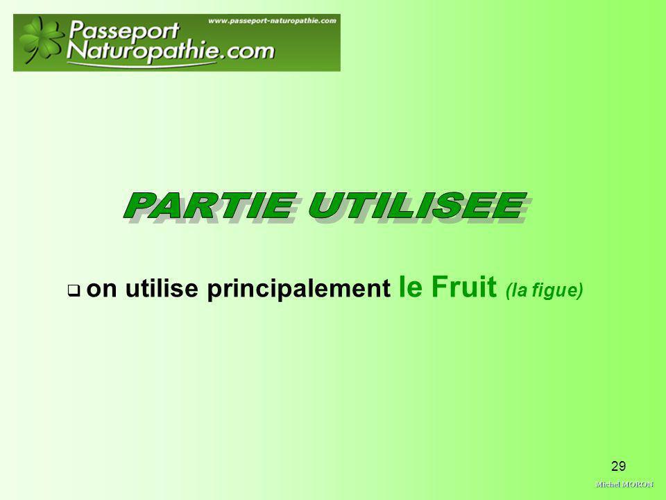 29 on utilise principalement le Fruit (la figue)